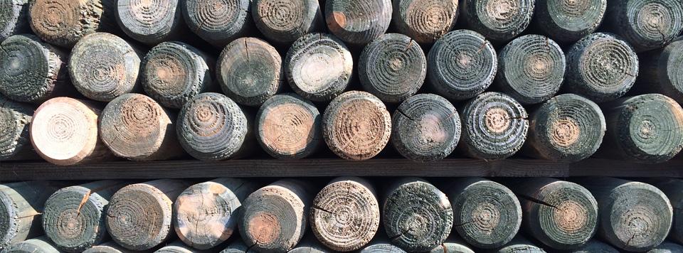 Holz Palisade Bangkirai Rollboard ~ Terrassendielen Überdachungen Zäune  Sichtschutz Gartenmöbel